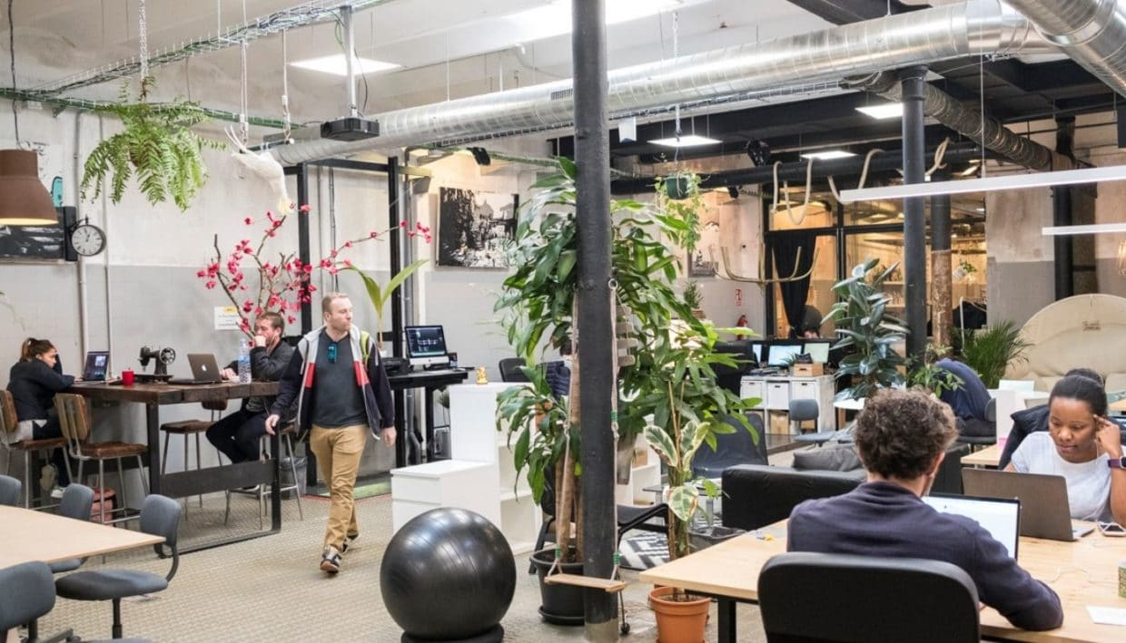 Bright and spacious workspace of la vaca coworking in Barcelona with people working